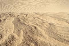 Windswept Dunes _8