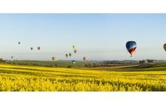 Balloons 2017_Panorama11 1m LRWM