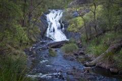 Bedalup Falls - Pemberton_7947
