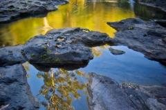 Cascade Reflections _ 1677