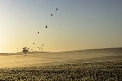 Hot Air Balloons_Panorama3