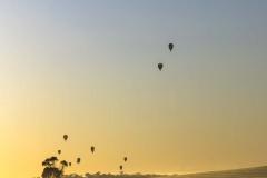 Hot Air Balloons _Panorama5