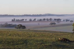 Fog in the Valley_Panorama 2
