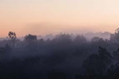 Toodyay Fog_Panorama1