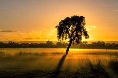 Whiteman Sunrise_Panorama 3